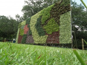 An example of a vertical garden like the ones at Expo Milano 2015. Image by Rameshng via Wikicommons