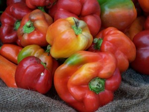 Capsicums in the innovation spotlight