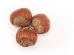 Ferrero Group buys major hazelnut farm in Turkey