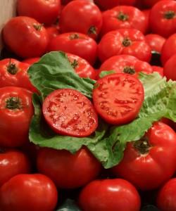 New tomato dumping investigation initiated